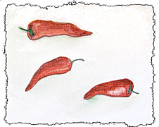 food art painting of redpeppers for chili recipes